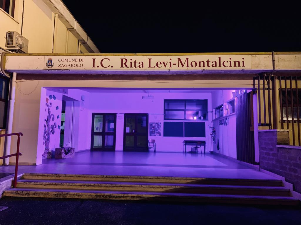 GIORNATA MONDIALE DEL TUMORE AL PANCREAS – 19 NOVEMBRE 2020 – Istituto  Comprensivo Rita Levi – Montalcini di Zagarolo